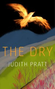 Dry.Cover
